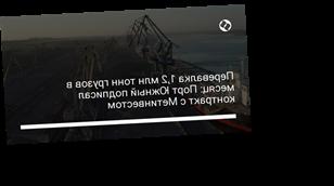 Перевалка 1,2 млн тонн грузов в месяц: Порт Южный подписал контракт с Метинвестом