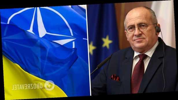 Польша добивалась, чтобы Украину пригласили на саммит НАТО как специального гостя, – глава МИД