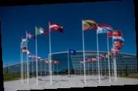Польша пыталась добиться приглашения Украины на саммит НАТО