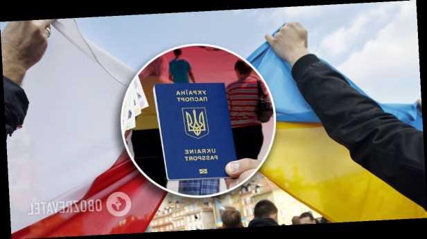Польша заманивает украинских заробитчан вместе с семьями, а спрос может взлететь: кого зовут