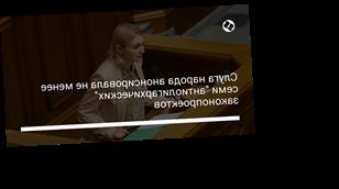 """Слуга народа анонсировала не менее семи """"антиолигархических"""" законопроектов"""