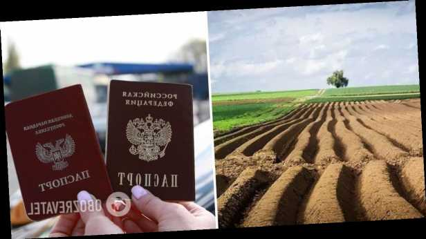 У россиян конфискуют украинскую землю: в Минагро выступили с предупреждением