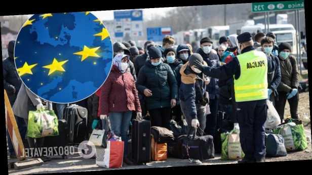 В Польше взлетело число вакансий для украинских заробитчан: кого берут без опыта и сколько платят