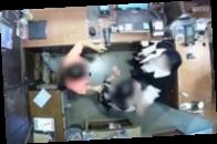 В Сеуле жена посла Бельгии ударила сотрудницу магазина