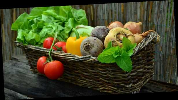 В Украине изменились цены на овощи, курятину и яйца: сколько стоят продукты