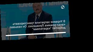 """В Украине запретили транслировать канал режима Лукашенко. Он называл добробат """"карателями"""""""