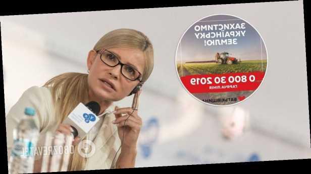 »Батьківщина» открыла горячую телефонную линию для помощи украинцам в защите земли
