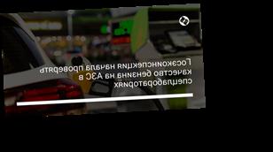 Госэкоинспекция начала проверять качество бензина на АЗС в спецлабораториях