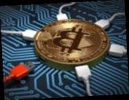 Инвестиции в «крипту»: в Украине заблокировали финансовую пирамиду (видео)