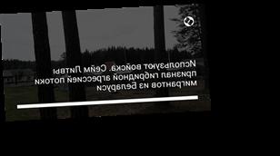 Используют войска. Сейм Литвы признал гибридной агрессией потоки мигрантов из Беларуси