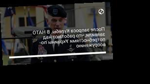 После запроса Кулебы. В НАТО заявили, что работают над потребностями Украины по вооружению