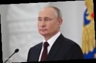 Путин посоветовал Зеленскому прочесть его статью