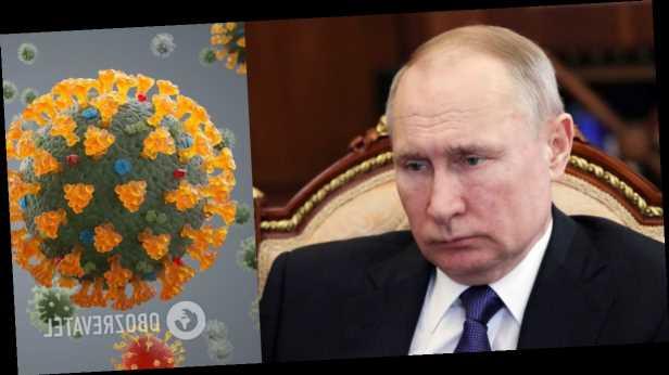 Саша Сотник: Россия и коронавирус: Путин боится разоблачения