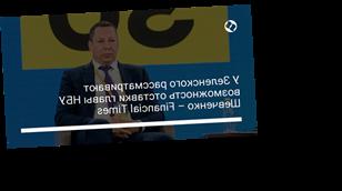 У Зеленского рассматривают возможность отставки главы НБУ Шевченко – Financial Times