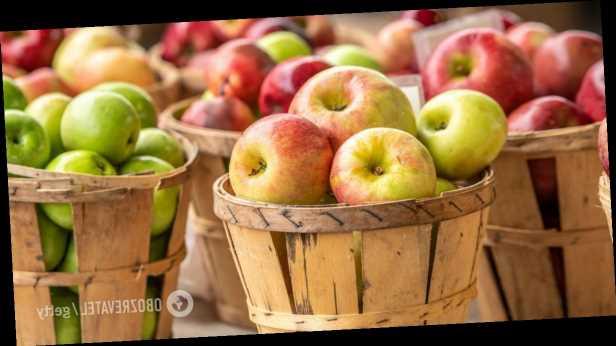 Урожаю яблок, винограда, сливы, дынь в Украине грозит уничтожение, – фермер