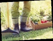 В Минфине опровергли слухи о дополнительных налогах на огороды