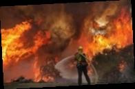 В России горят тысячи гектаров леса: есть жертва