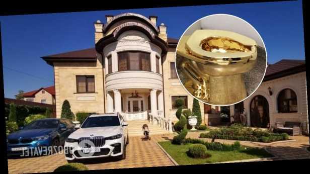 В России у чиновника ГИБДД нашли дворец в Пшонка-style. Фото