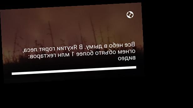 Все небо в дыму. В Якутии горят леса, огнем объято более 1 млн гектаров: видео