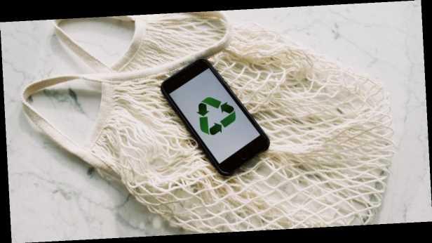 Юлия Савостина: Может ли быть прибыльным »зеленый бизнес»?