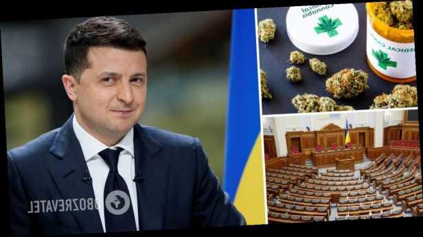 Зеленский созывает внеочередное заседание ВР для легализации медицинского каннабиса