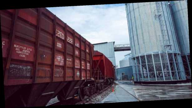 На первых аукционах в »Прозорро» стоимость перевозки зерновозами УЗ выросла вдвое