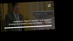 Украина и Грузия станут членами НАТО – заместитель генсека Альянса