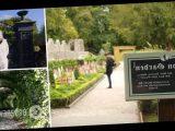 В Британии растет самый смертоносный сад в мире: каждое растение может убить