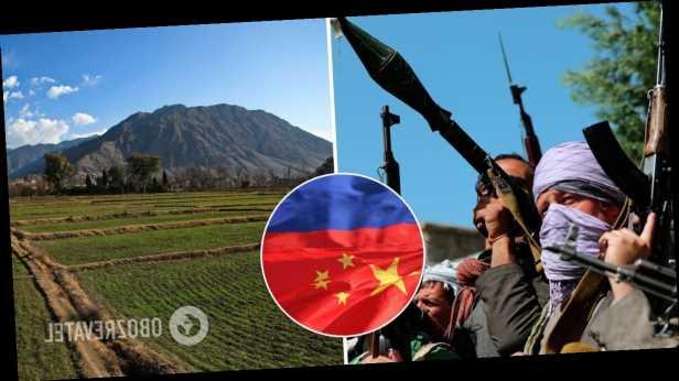 В игру вступают Китай и Россия: кому достанутся триллионные ископаемые Афганистана?