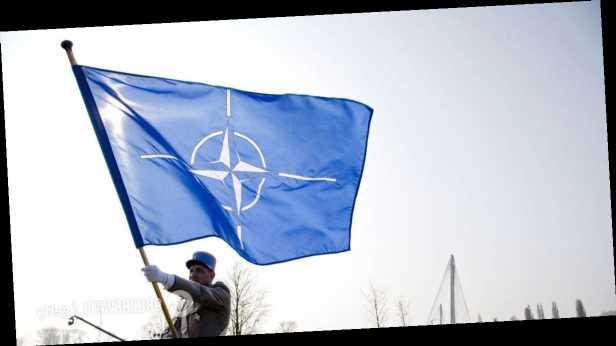 Замгенсека НАТО о перспективах вступления Украины и Грузии в Альянс: решение есть, это подтверждено на высоком уровне