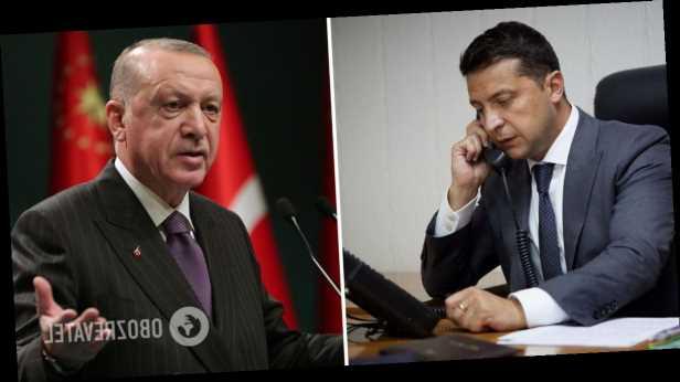 Зеленский попросил Эрдогана помочь в освобождении крымских татар из плена РФ