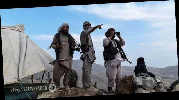 Ходят по домам и ищут синие паспорта: девушка рассказала, как талибы охотятся на американцев