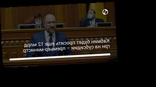 Кабмин будет просить еще 12 млрд грн на субсидии – премьер-министр