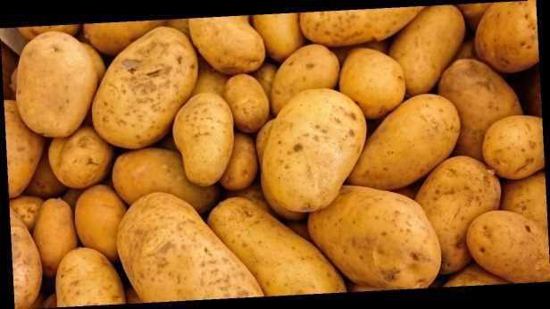 Картошки мало и она плохая: когда и насколько взлетят цены в Украине