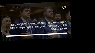Корниенко о приглашении Разумкова в Трускавец: Заседание фракции – это не свадьба