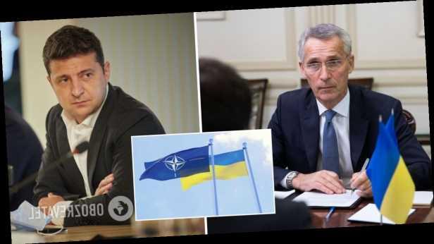 НАТО без Украины будет слабее: Зеленский и Столтенберг обсудили взаимодействие Украины с Альянсом. Видео