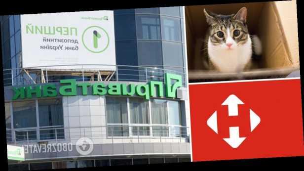 »Новая почта» и ПриватБанк огорчили, а »Укрпочта» посчитала посылку с котом: чем удивили чат-боты крупнейших компаний