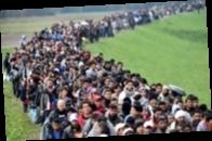 В Дании мигрантов обяжут отрабатывать пособие