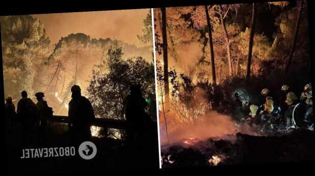 В Испании вспыхнул масштабный лесной пожар, сотни людей эвакуировали. Фото и видео