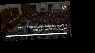 В Раде сегодня представят проект бюджета: повестка дня