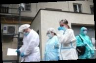 В арбузе, которым отравилась семья в Москве, нашли вещества для дезинсекции