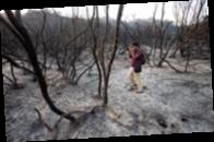 Загрязнение воздуха. Как убивают лесные пожары