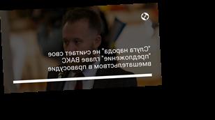 """""""Слуга народа"""" не считает свое """"предложение"""" главе ВАКС вмешательством в правосудие"""