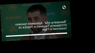 """""""Виноваты оба"""". Арахамия призвал отстранить Тищенко и Лероса за толкотню в Раде"""