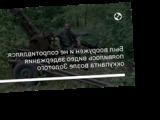 Был вооружен и не сопротивлялся: появилось видео задержания оккупанта возле Золотого