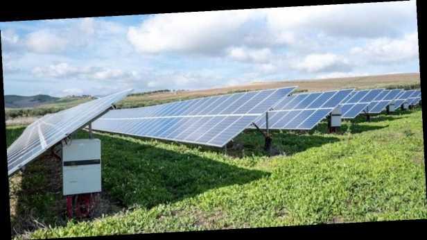 »Гарпок» повысил точность прогноза суточного производства »зеленой» энергии, – Петриковец