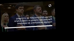 Когда проголосуют за отставку Разумкова: спикер и глава Слуги народа разошлись во мнениях
