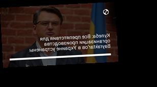Кулеба: Все препятствия для организации производства Bayraktar'ов в Украине устранены