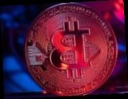 Можем попасть в черный список: Рожкова назвала риск криптовалют