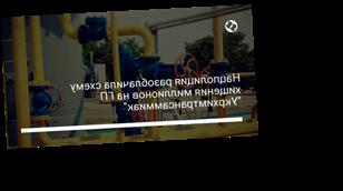 """Нацполиция разоблачила схему хищения миллионов на ГП """"Укрхимтрансаммиак"""""""